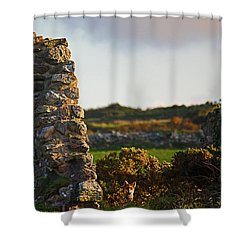 Botallack Fox At Sunset Shower Curtain by Terri Waters