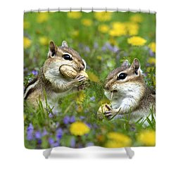 Bountiful Generosity Shower Curtain by Christina Rollo