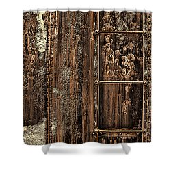 Boxcar's Ladder   Shower Curtain by Marcia Colelli