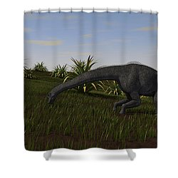 Brachiosaurus Grazing In A Grassy Field Shower Curtain by Kostyantyn Ivanyshen