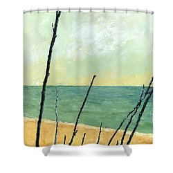Branches On The Beach - Oil Shower Curtain by Michelle Calkins