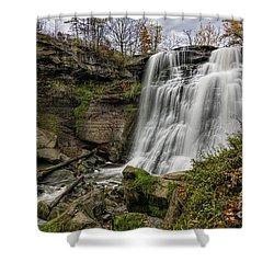 Brandywine Falls Shower Curtain by James Dean