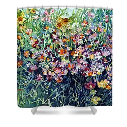 Breeze And Daydream Shower Curtain by Hailey E Herrera