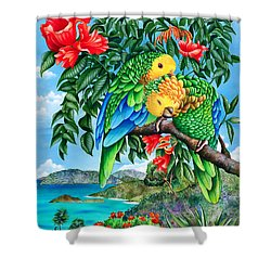 Bride And Grooming Shower Curtain by Carolyn Steele