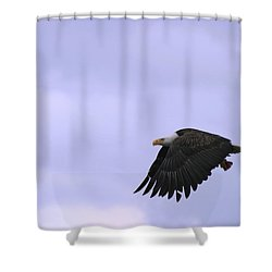 Broken Feather Eagle Shower Curtain by Kym Backland