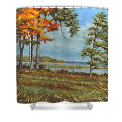 Browns Bay Shower Curtain by Richard De Wolfe