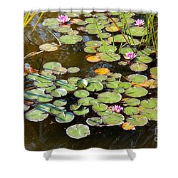 Bruges Lily Pond Shower Curtain by Carol Groenen