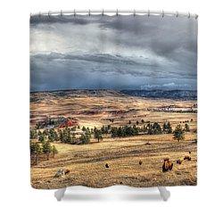 Shower Curtain featuring the photograph Buffalo Before The Storm by Bill Gabbert