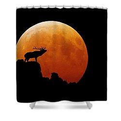 Bull Elk Shower Curtain by Stuart Harrison
