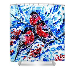 Bullfinches Shower Curtain by Zaira Dzhaubaeva