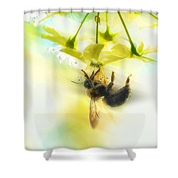 Bumble Going In For The Nectar Shower Curtain by Dan Friend