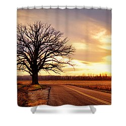 Burr Oak Silhouette Shower Curtain by Cricket Hackmann