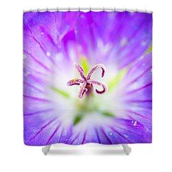 Burst Shower Curtain by Shane Holsclaw