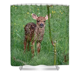 But That Rose Was So Tasty Shower Curtain by Kym Backland
