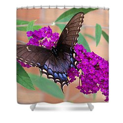 Butterfly And Friend Shower Curtain by Luther   Fine Art