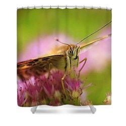 Butterfly Macro Shower Curtain by Adam Romanowicz