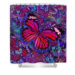 Butterfly Red Explosion Shower Curtain by Alixandra Mullins