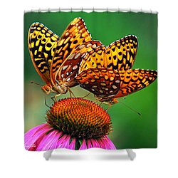 Butterfly Twins Shower Curtain by Christina Rollo