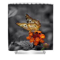 Butterfly Wings Of Sun Light Selective Coloring Black And White Digital Art Shower Curtain by Thomas Woolworth