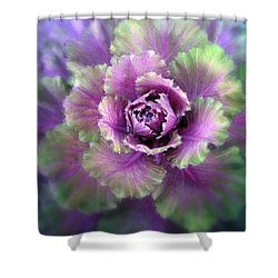 Cabbage Flower Shower Curtain by Jessica Jenney