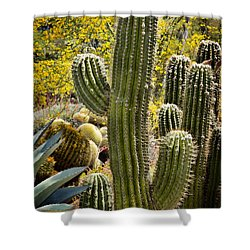 Cacti Habitat Shower Curtain by Kelley King