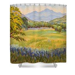 California Glow Shower Curtain by Karin  Leonard