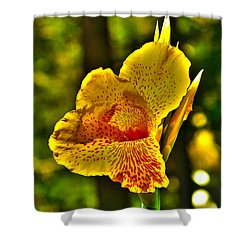 Canna Wow Shower Curtain by Kim Pate