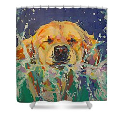 Cannonball Shower Curtain by Kimberly Santini
