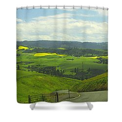 Canola Country Road Shower Curtain by Anne Mott