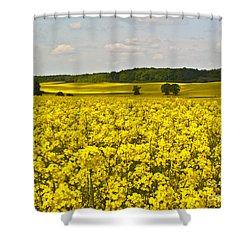 Canola Field Shower Curtain by Heiko Koehrer-Wagner