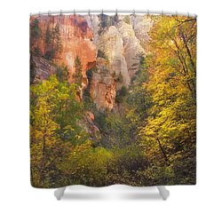 Canyon Kaleidoscope  Shower Curtain by Peter Coskun