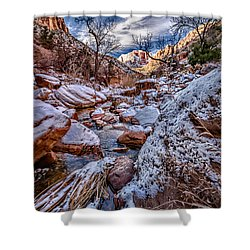 Canyon Stream Winterized Shower Curtain by Christopher Holmes