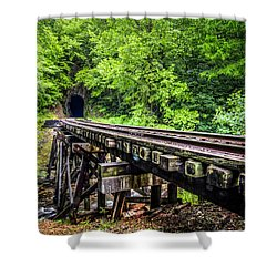 Carolina Railroad Trestle Shower Curtain by Debra and Dave Vanderlaan