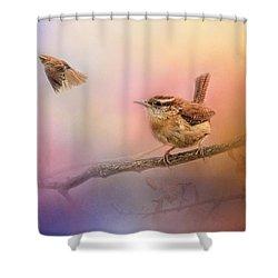 Carolina Wrens Shower Curtain by Jai Johnson