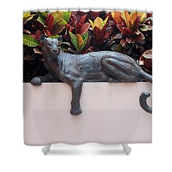 CAT Shower Curtain by Rob Hans