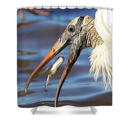 Catch Of The Day Shower Curtain by Bruce J Robinson