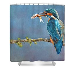 Catch Of The Day Shower Curtain by David Stribbling