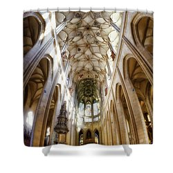 Cathedral Glow Shower Curtain by Joan Carroll