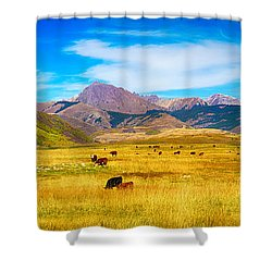 Cattle Grazing Autumn Panorama Shower Curtain by James BO  Insogna