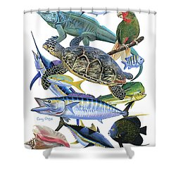 Cayman Collage Shower Curtain by Carey Chen