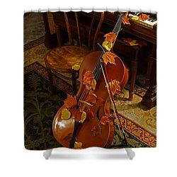 Cello Autumn 1 Shower Curtain by Mick Anderson