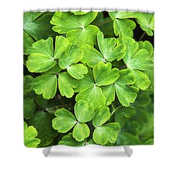 Certain Green Shower Curtain by Christina Rollo