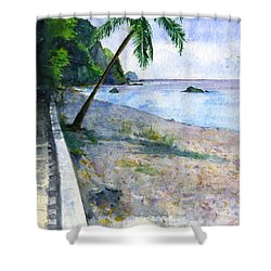Champagne Snorkel Dominica Shower Curtain by John D Benson