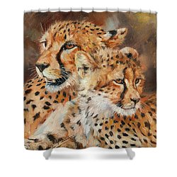 Cheetah And Cub Shower Curtain by David Stribbling