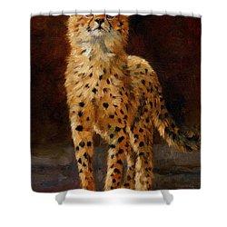 Cheetah Cub Shower Curtain by David Stribbling