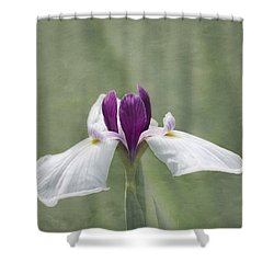 Cherished Shower Curtain by Kim Hojnacki
