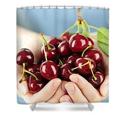 Cherries Shower Curtain by Elena Elisseeva