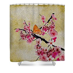 Cherry Blossoms Shower Curtain by Cheryl Young