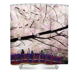 Cherry Blossoms Shower Curtain by Kume Bryant