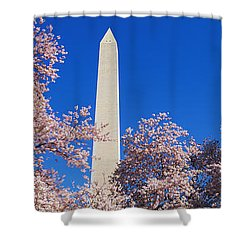 Cherry Blossoms Washington Monument Shower Curtain by Panoramic Images